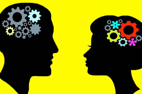 Apa itu Tiu 5, Tes Psikotes Seleksi Perusahaan