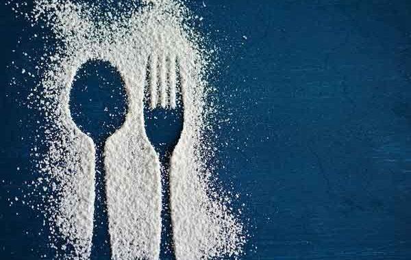 Wellness Makanan